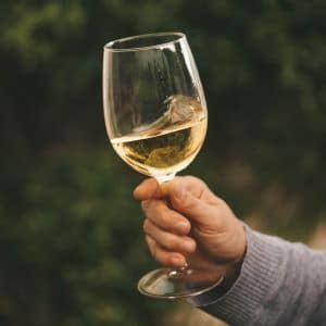 wine to pair with fermented cashew cheese